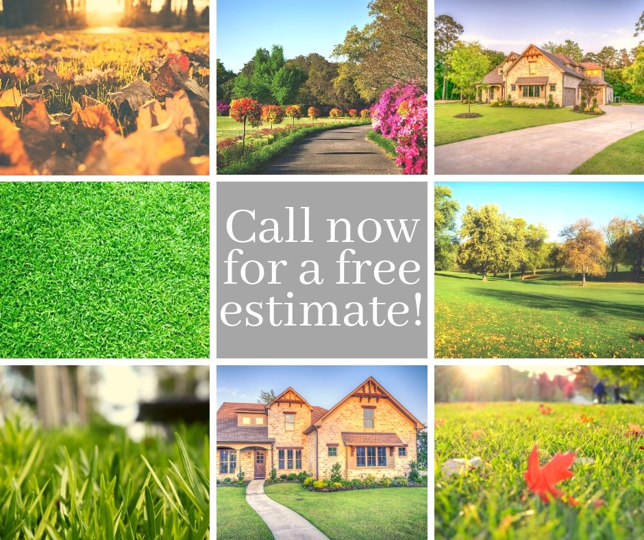 Lake Lure Lawn Care